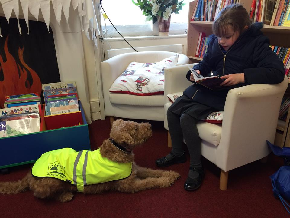 A six year-old-girl sits in an armchair and is reading to a dog in a high-vis jacket who lies at her feet.